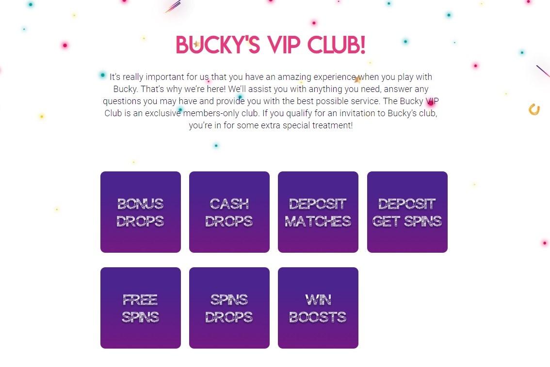Bucky Bingo VIP Club