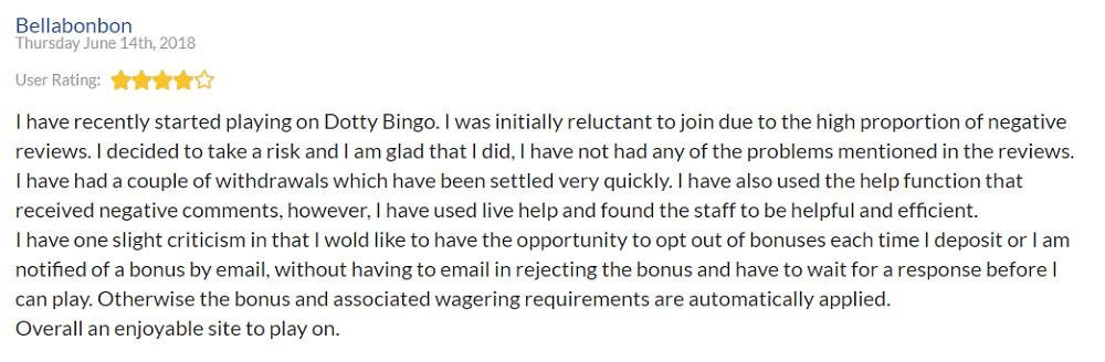 Dotty Bingo Player Review 4