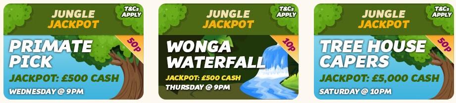 Monkey Bingo Jackpots