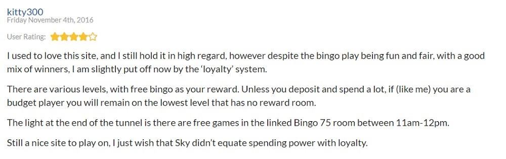 Sky Bingo Player Review 4