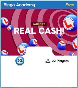 Angry Bingo Bingo Academy