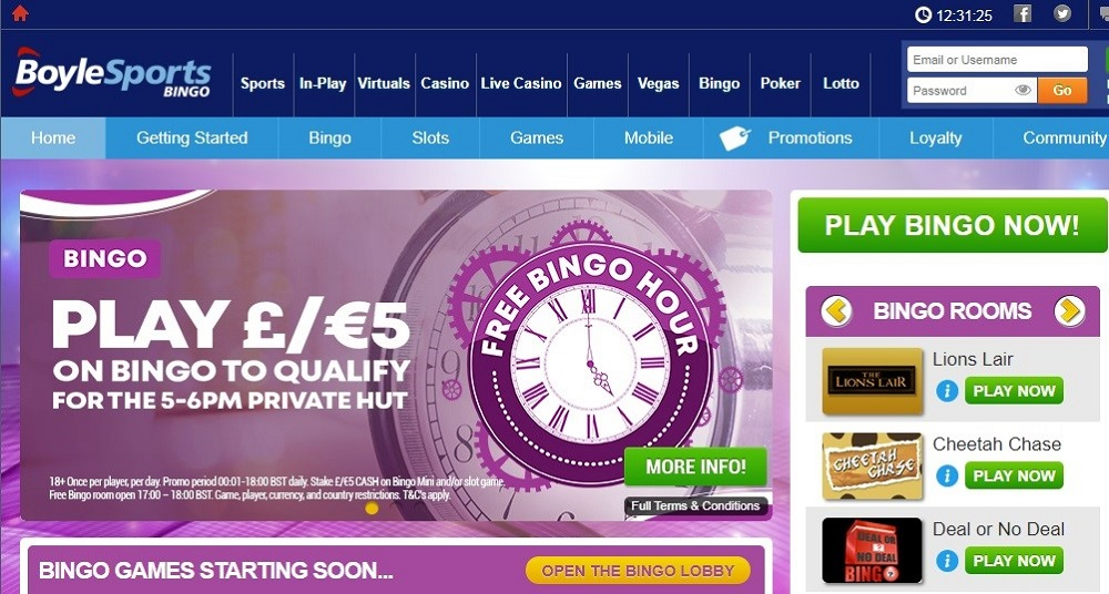Boyle Bingo Website