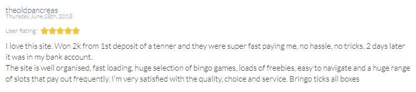 Bringo Bingo Player Review