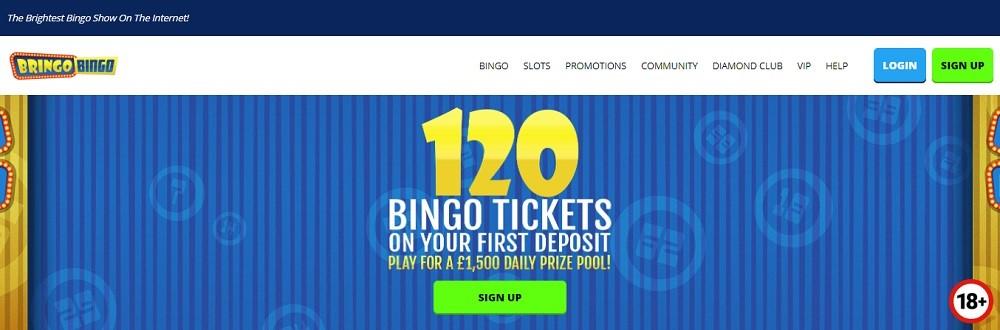 Bringo Bingo Website