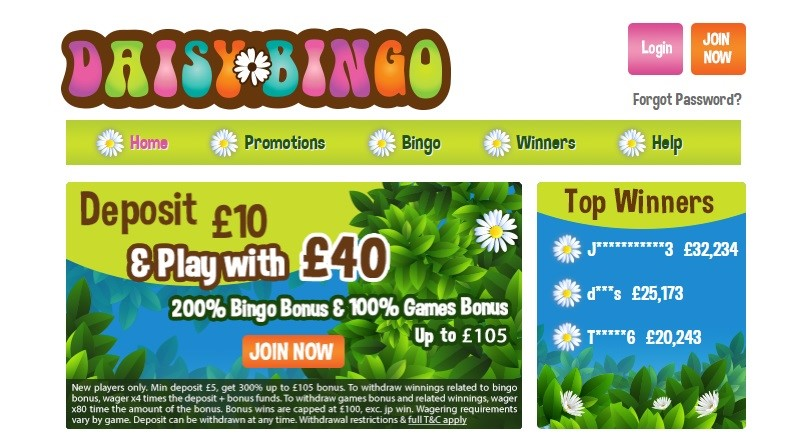 Daisy Bingo Website