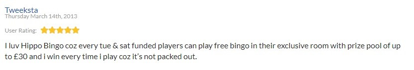Hippo Bingo Player Review 2