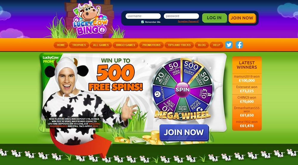 Lucky Cow Bingo Website