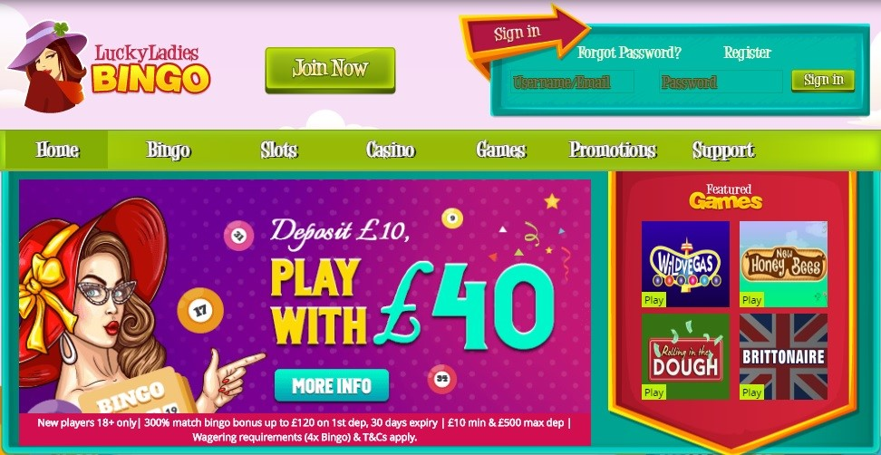 Lucky Ladies Bingo Website