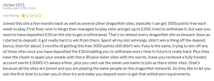 Nutty Bingo Player Review