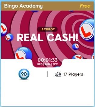 Treasure Bingo Bingo Academy