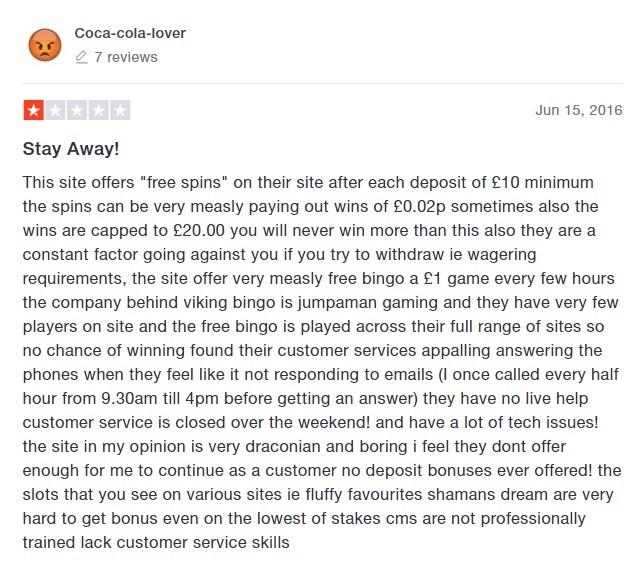 Viking Bingo Player Review 4