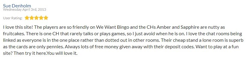 We Want Bingo Player Review 4