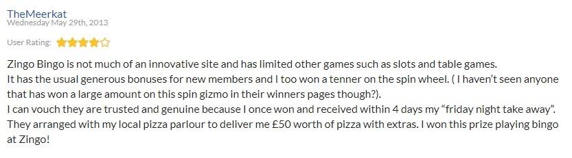 Zingo Bingo Player Review 4