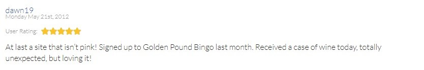 Golden Pound Bingo Player Review 2