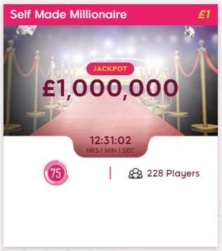 Ted Bingo Self Made Millionaire