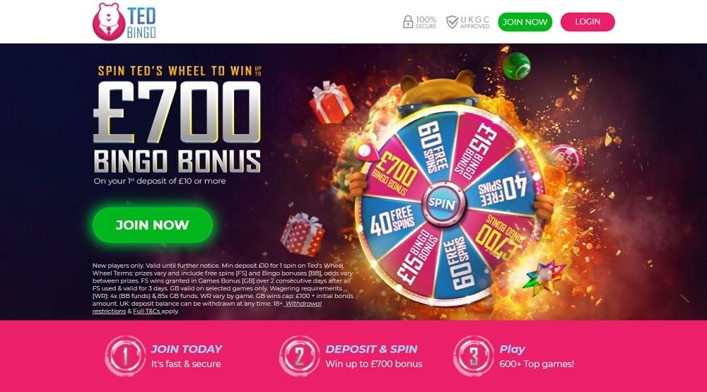 Ted Bingo Website